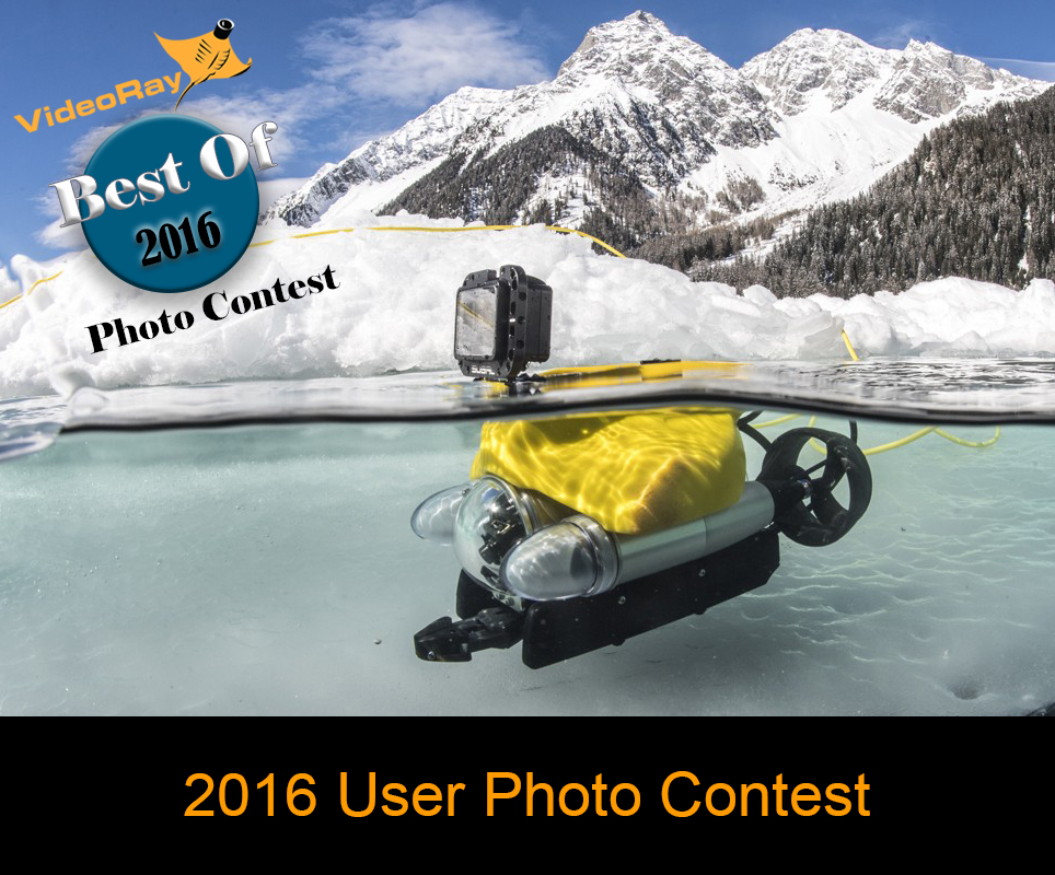 Photo Contest 2016 Gallery Header