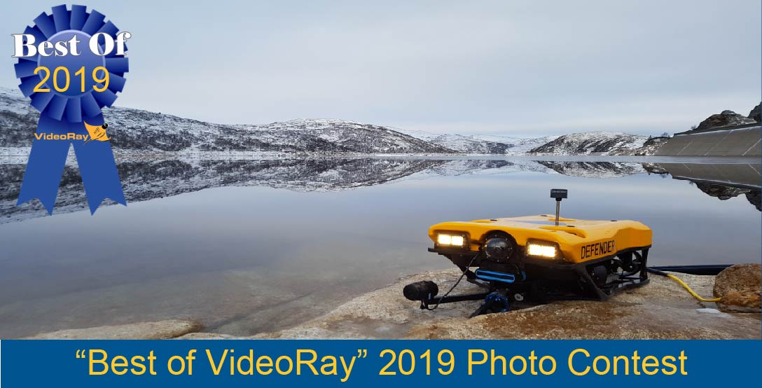 Photo Contest 2019 Gallery Header