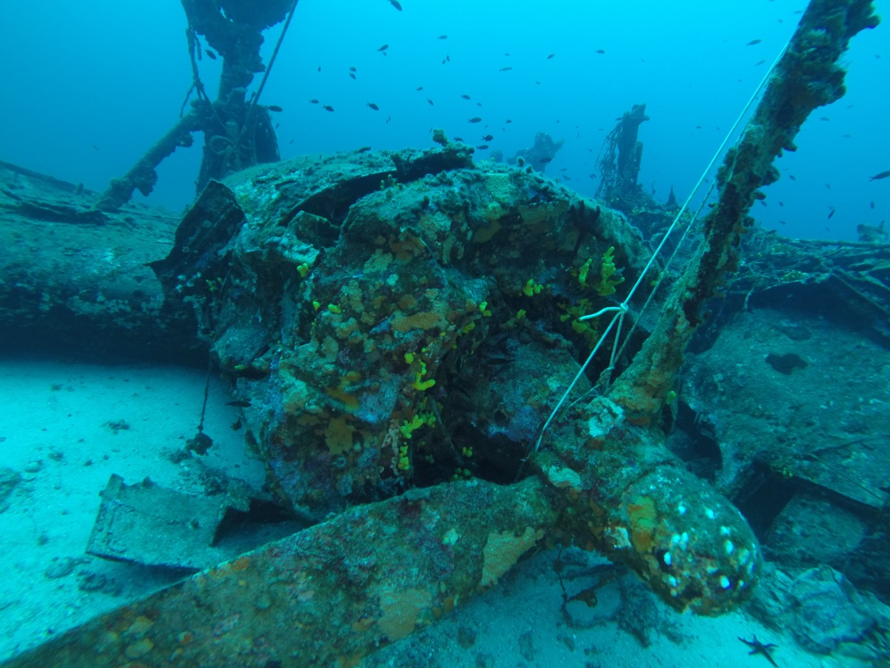 FEBRUARY 1, 2016 - VideoRay Pro 4 ROV Surveys Sunken WWII B-24 Bomber